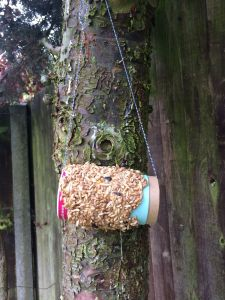 groove bulb bird feeder (5)