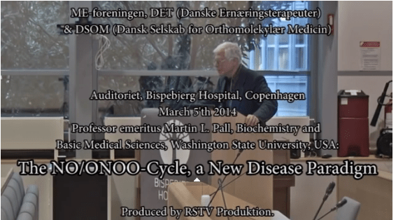 The NO/ONOO-Cycle, a New Disease Paradigm, by Martin L. Pall