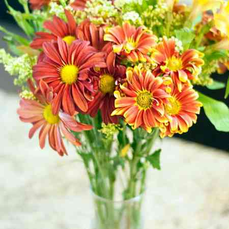 My household essential : Fall flowers!