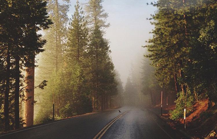 Вдохновение природой: шёпот осени