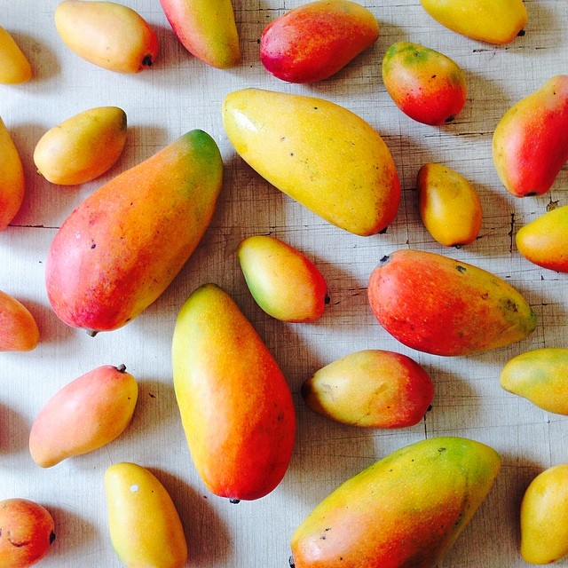Инстаграм находки: фруктовое удовольствие