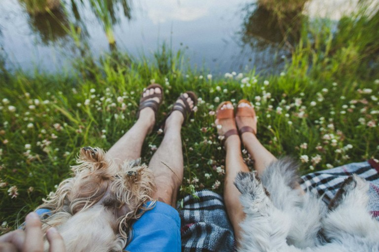 4 ноги, 8 лап и 2 хвоста: love-story Никиты и Катерины