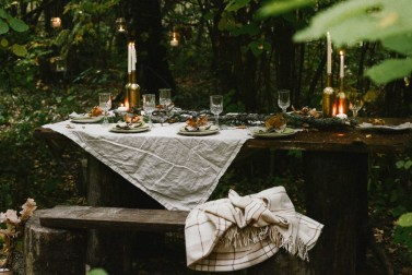 Piknik v lesy (2)