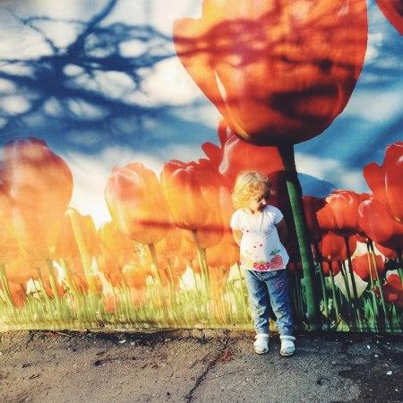 По пути домой из детского сада: каждый день маленькой Софи