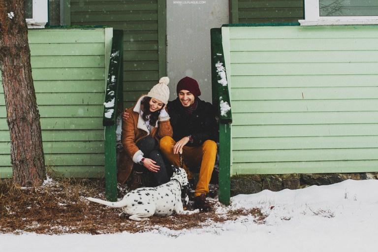 4 лапы на снегу: продолжение приключений Рэйны