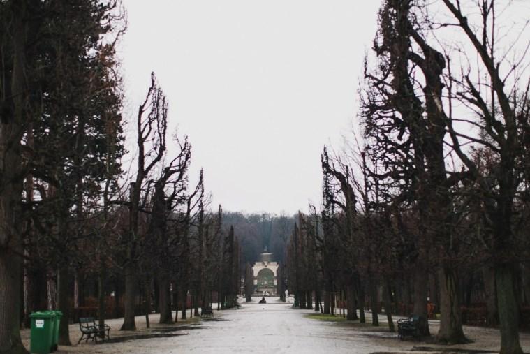 Музыка весны: путешествие в Вену