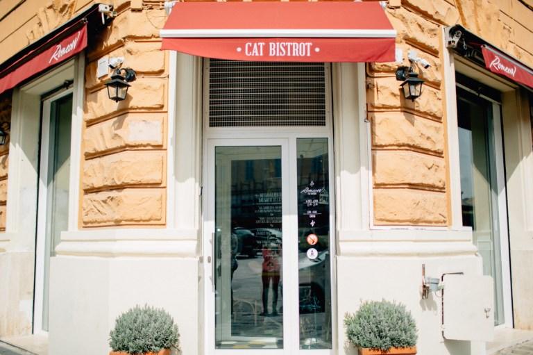 Котокафе Romeow Cat Bistrot