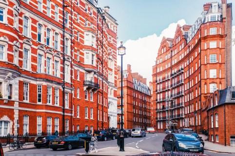 Под цветущей магнолией: путешествие в Лондон