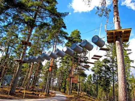 Чудеса нашей страны: 10 интересных парков России