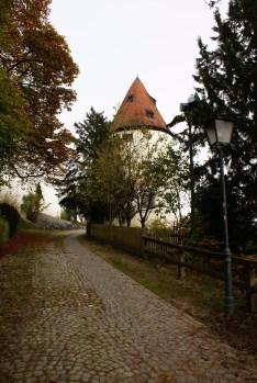 Осенние зарисовки: путешествие по городам Австрии и Германии