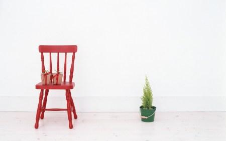 Домашнее садоводство: готовимся к Новому году