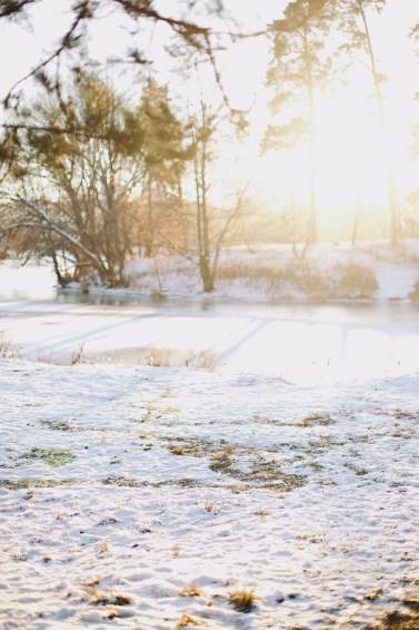 Зимняя сказка: Александра и Алексей в ожидании сына