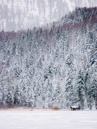 Под звон колоколов: Новый год в Баварии