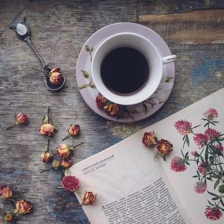 Книжный шкаф: 5 книг ко дню всех влюбленных