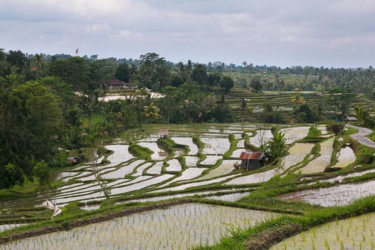 Такая удивительная Индонезия: путешествие на о. Ява и о. Бали