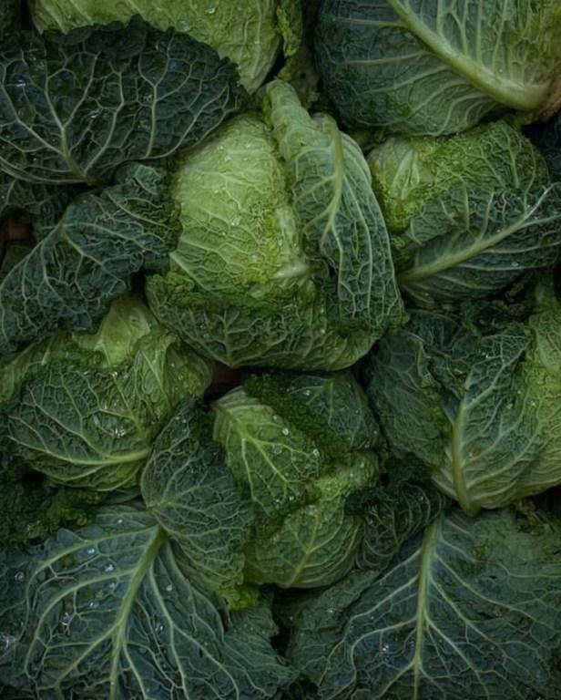 Какие продукты полезнее употреблять в пищу в феврале. ТОП-10 сезонных продуктов