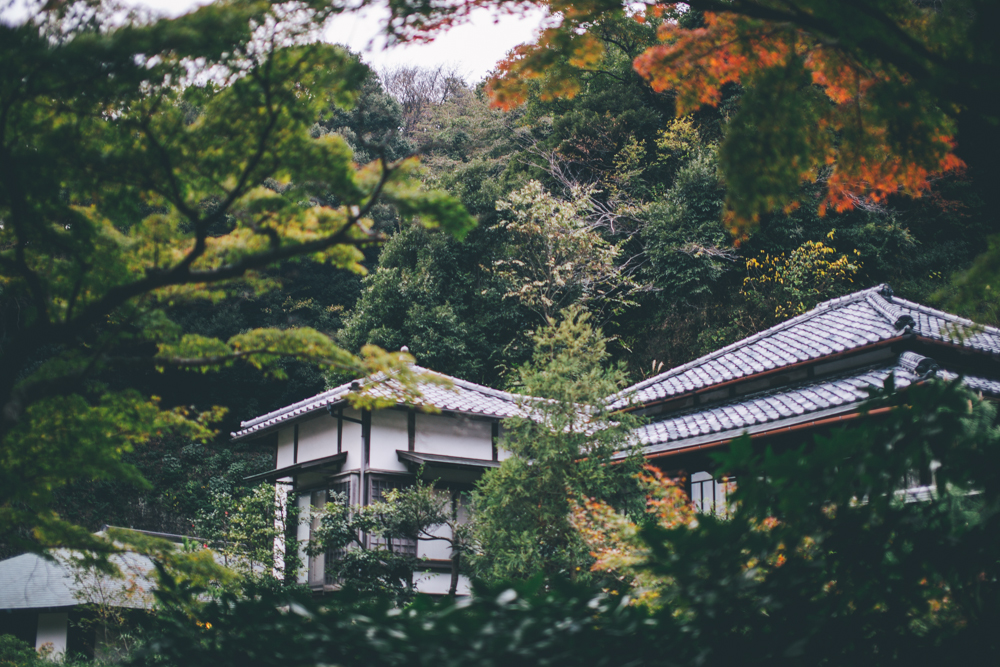 tokyo-151121-36