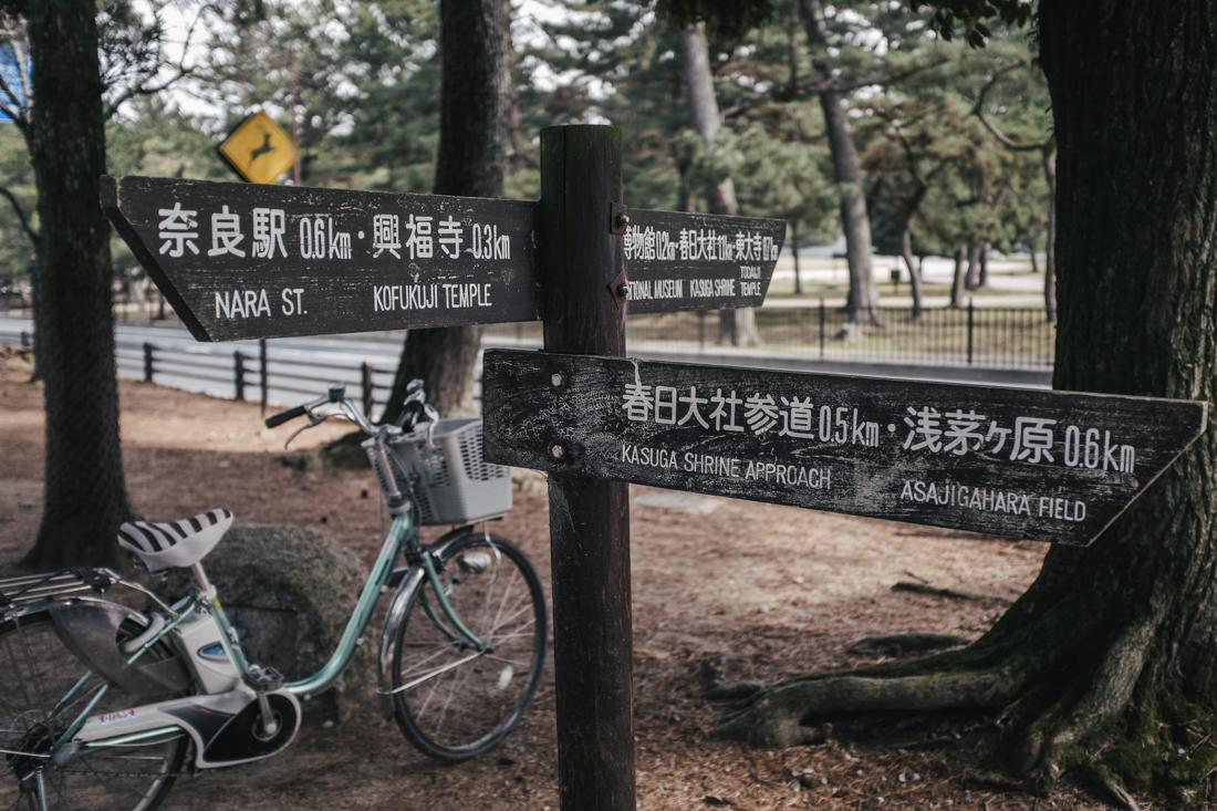 Nara-Park-160306-13