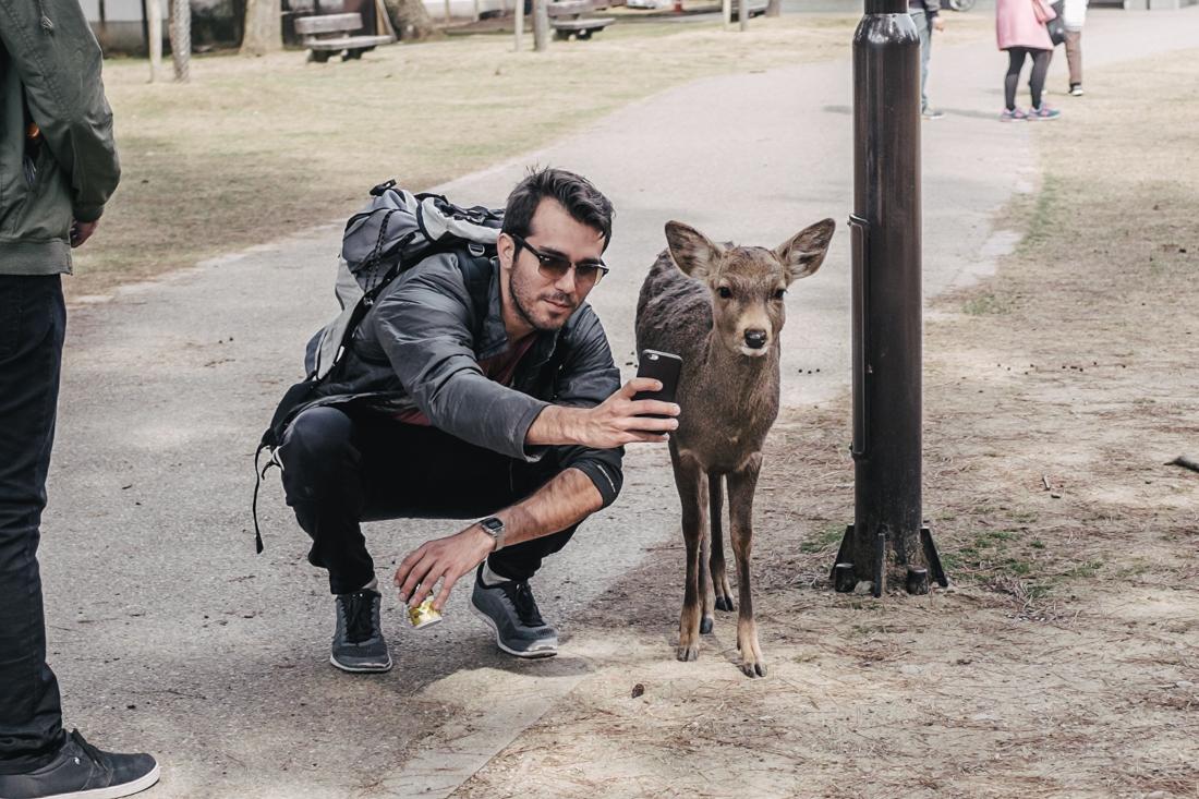 Nara-Park-160306-9