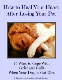 how to heal after losing your pet