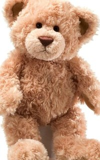 Teddy Bear Breakup Letter