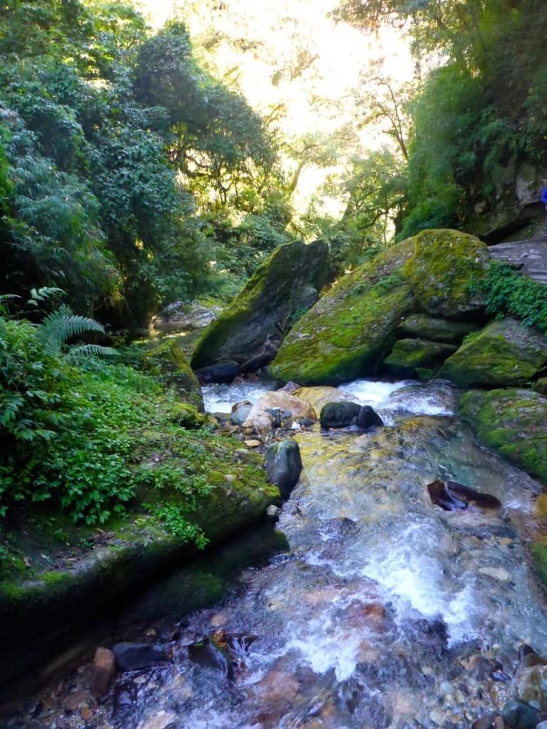 Jungle stream in Nepal.