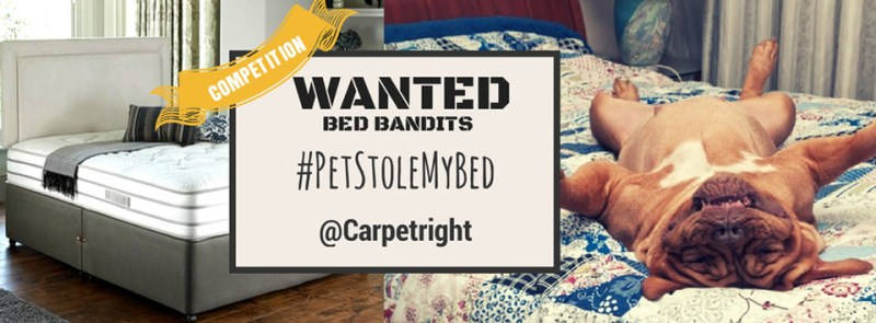 Win £500 to spend on a bed