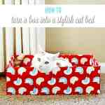 Turn an Ordinary Cardboard Box Into a Stylish DIY Cat Bed