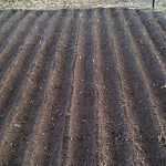 Large Plot with Rows by the RowMaker