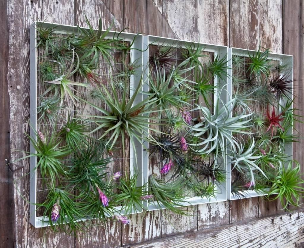 Fullsize Of Garden Wall Decoration