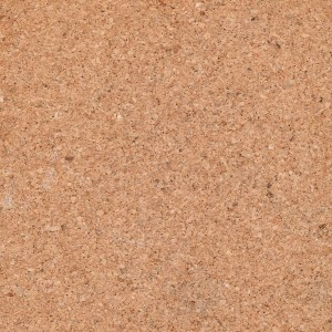 Pros And Cons Of Cork Flooring Wooden Flooring Ideas 2016