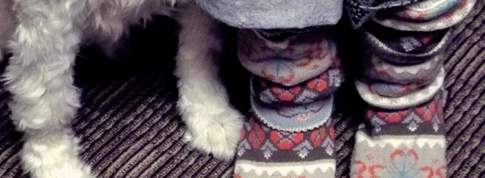 Home Office Fashion: Muk Luks and Paws