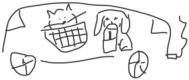 cat-and-dog-vehicle-wrap-basket