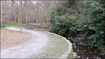 Palth along a stream