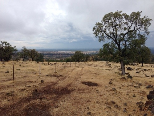 The other side of the fence is Upper Bidwell Park and directly ahead, the City of Chico.