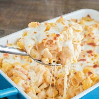Buffalo Chicken Alfredo Bake