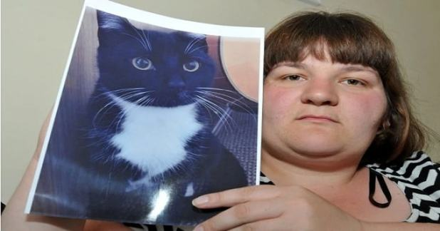 Leanne Harris has been left devastated by the death of her cat, Toby.