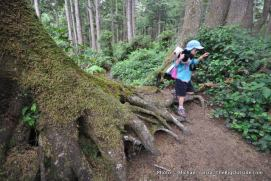 Alex hiking the overland trail to Mosquito Creek.