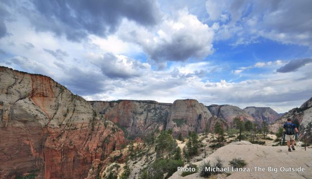 Above Zion Canyon on the West Rim Trail, Zion National Park, Utah.