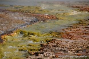Excelsior Geyser outflow, Midway Geyser Basin