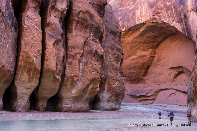 In the narrows of Paria Canyon on day two.
