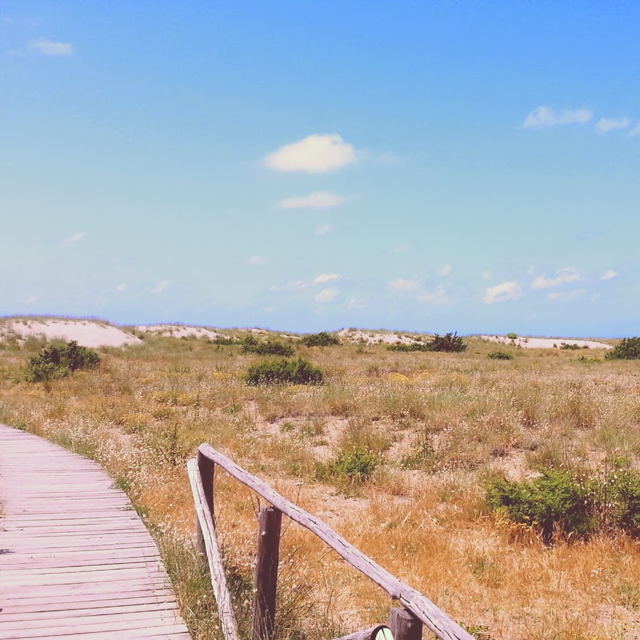 dune sabbia miele spiaggia