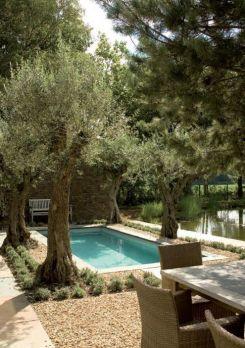 Mediterranean garden 2