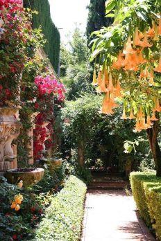 Mediterranean garden 4