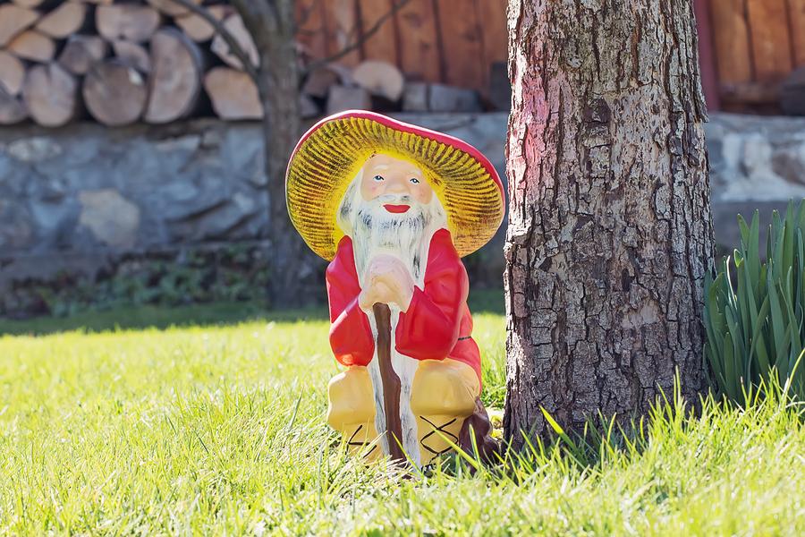 Garden gnome in an autumn garden in the grass