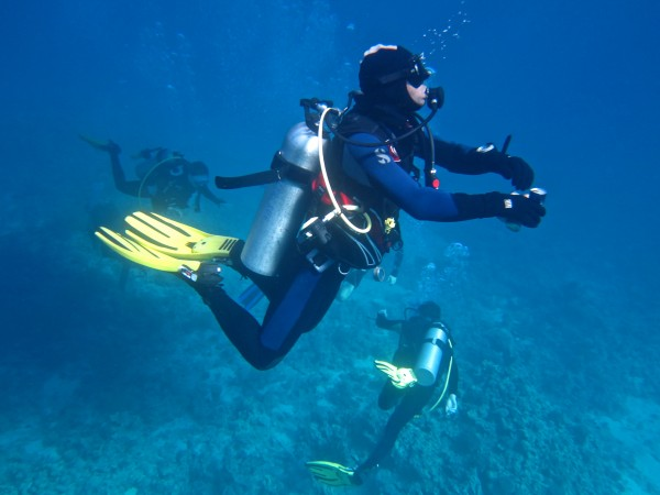 Some of the divers exploring the reef