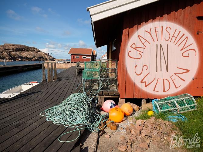 Crayfishing in Sweden
