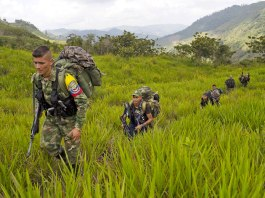 Colombian victims, Colombia Excombatants, Colombia peace process