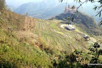 Scenery on the way from Sapa to Cat Cat village