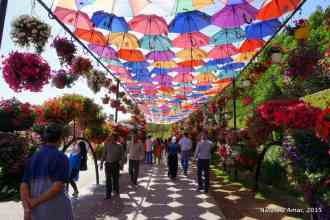 Love the effect of the brightly colored umbrellas!